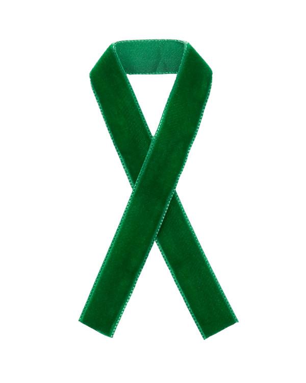 Fløyelsbånd Grønn
