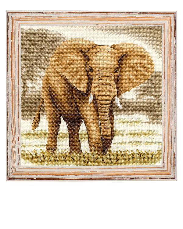 Bilde Elefanten