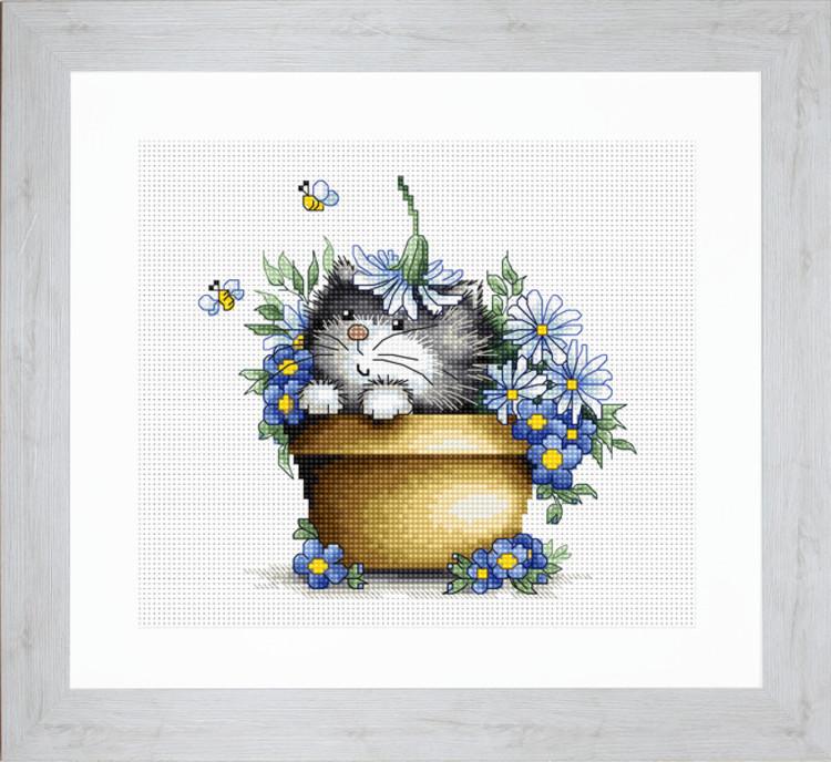 Bild Katze im Blumentopf