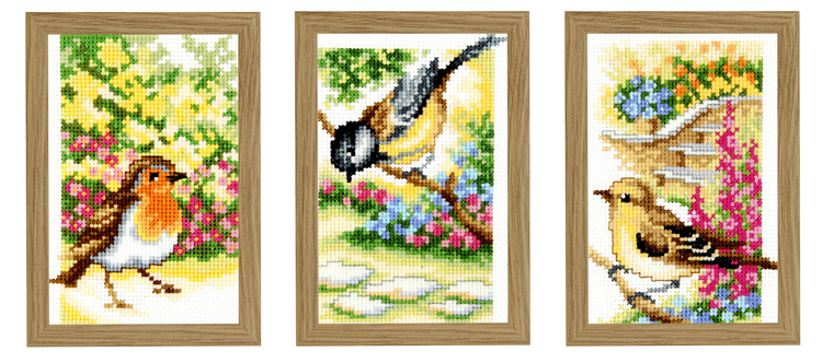 Bilder Fugler i nærbilde 3-pk