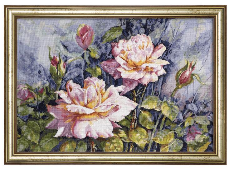 Bilde Vakre roser
