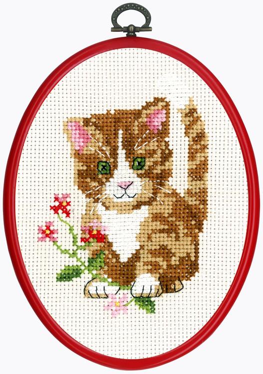 Taulu Punainen kissanpentu