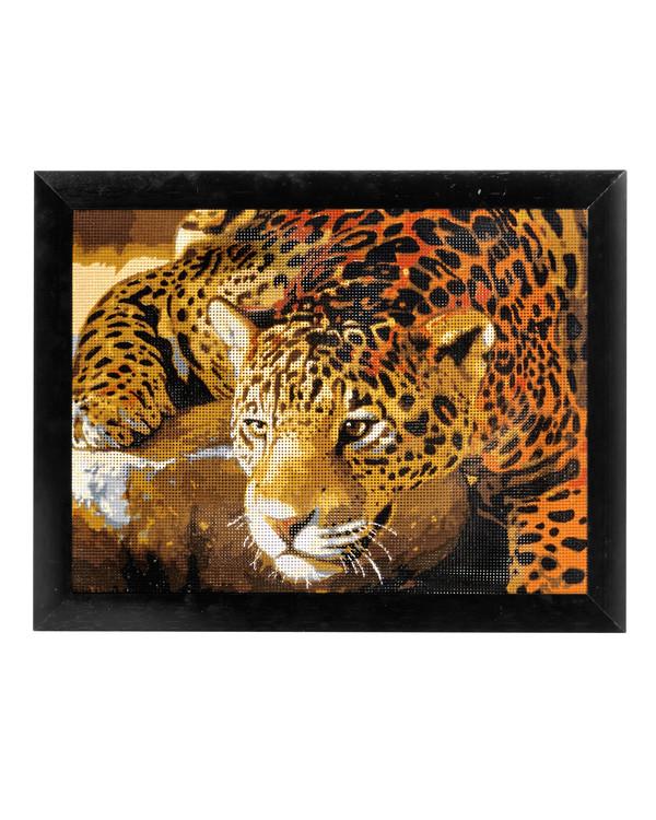 Stramei Jaguar på jakt med eller uten garn