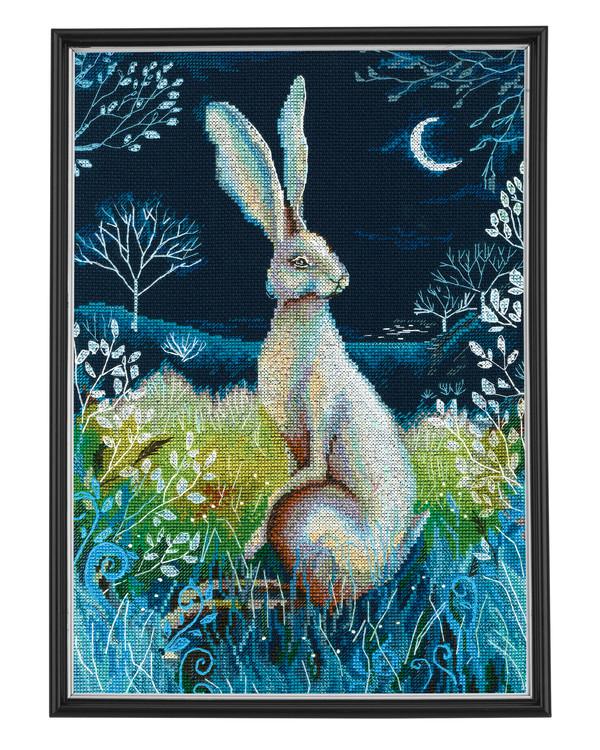 Bilde Hare
