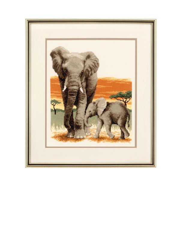Bilde Elefanter