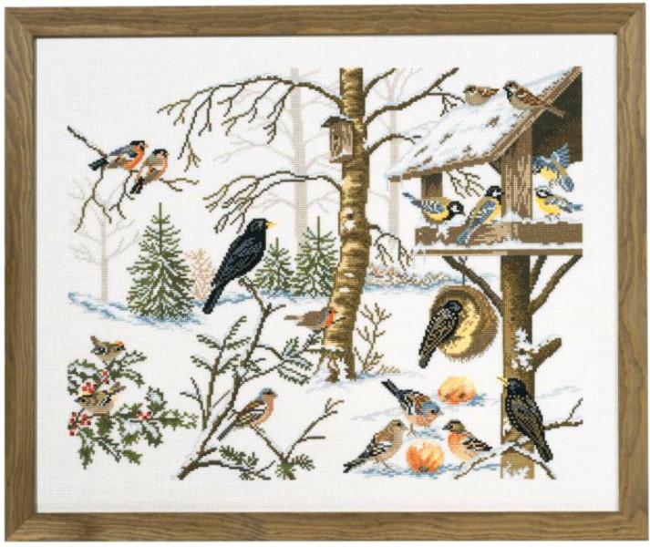 Billede Vinterfugle