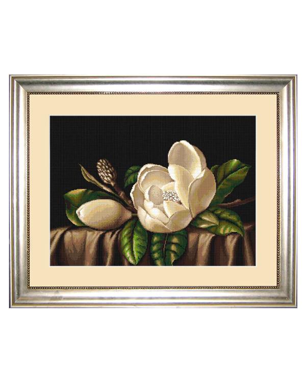 Taulu Komea magnolia