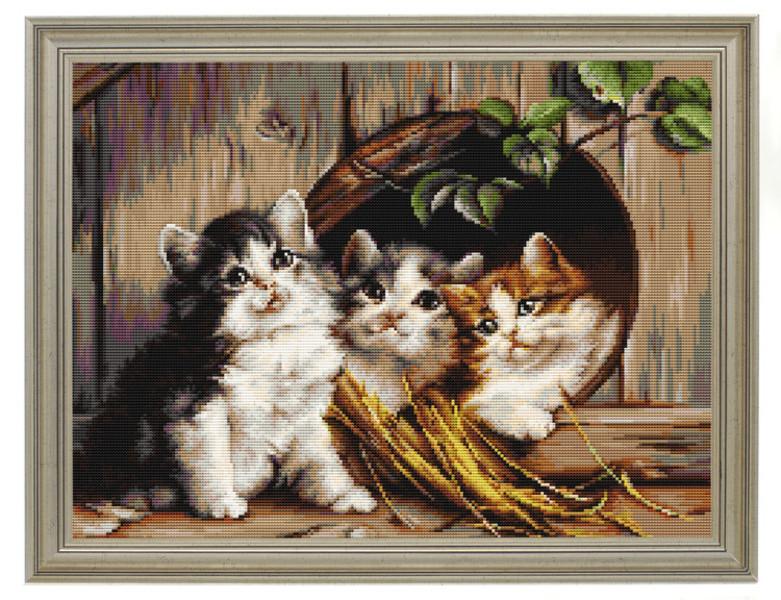Bild Katzenhöhle