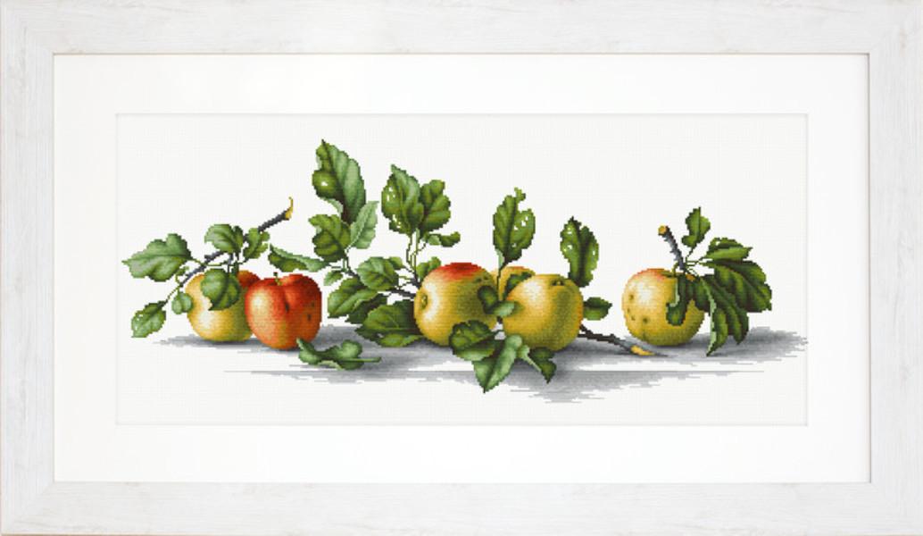 Bilde Epler på rad