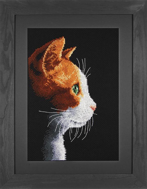 Bild Katze im Profil