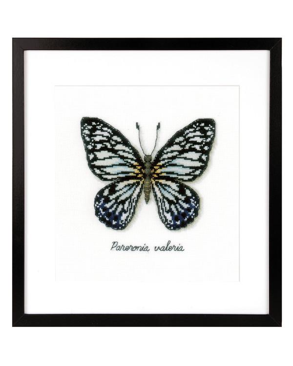 Taulu Sininen perhonen
