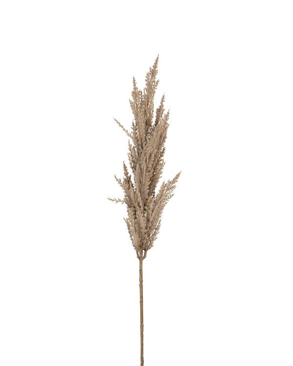 Tekokasvi Pampaheinä 90 cm