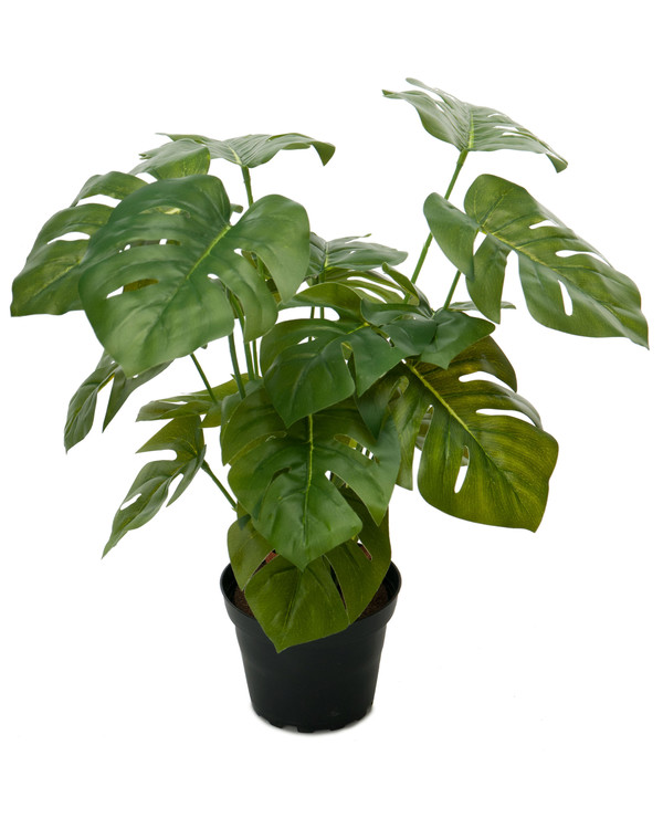 Kunstplante Monstera 30 cm