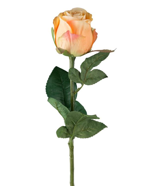 Taidekasvi Ruusu 3 kpl